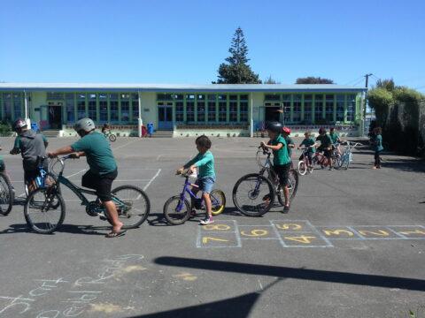 St Peter Chanel School bikes