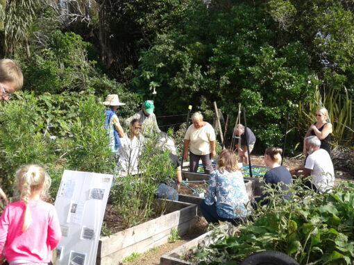 Ōtaki College Community Garden