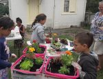 Community Gardening – Take 3: Growing Plants and People