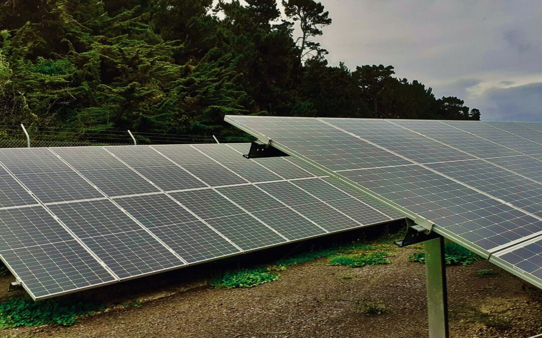Our Solar Farm Wins Prize, Launches Fund
