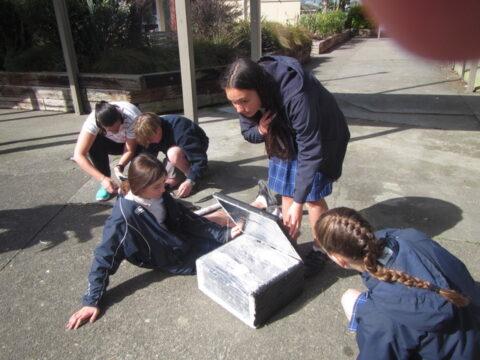 Sustainable Energy Curriculum