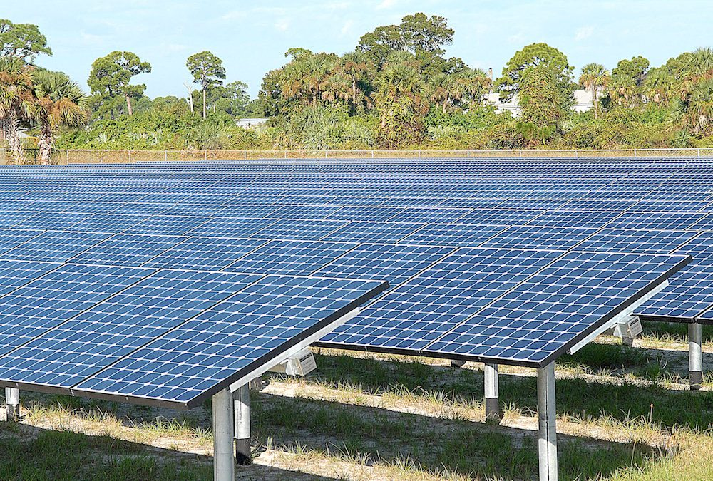 ENERGISE ŌTAKI ANNOUNCES SOLAR FARM PROJECT